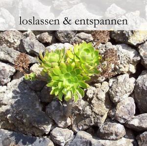 """Cover der CD """"loslassen & entspannen""""."""
